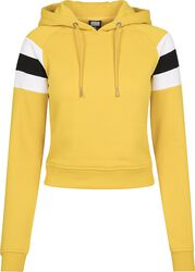 Ladies Sleeve Stripe Hoody