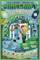 Overworld Biome