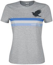 Ravenclaw - Stripes
